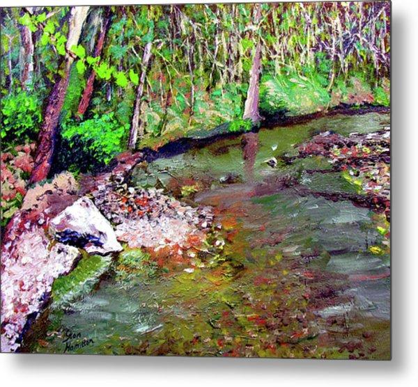 Greesy Creek Metal Print by Stan Hamilton