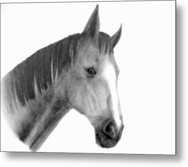 Jess Metal Print by Susan Tilley