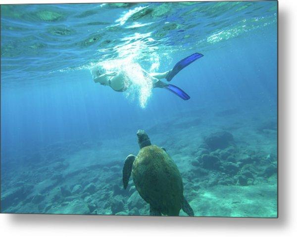 Snorkeler Female Sea Turtle Metal Print