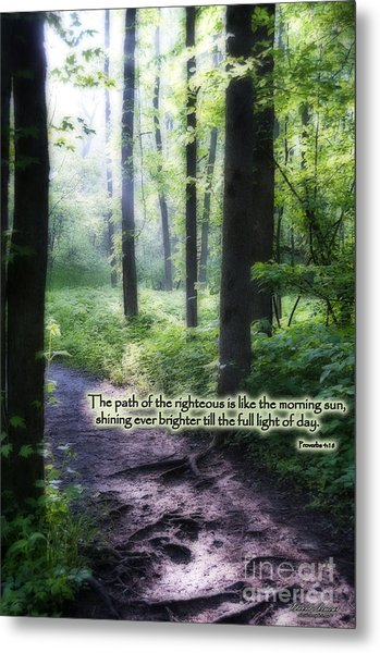 The Path Metal Print