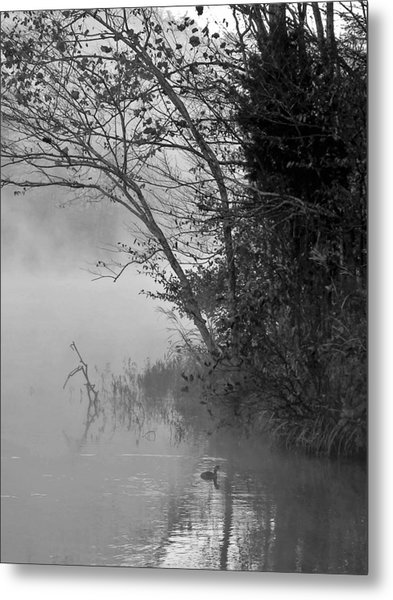 To The Mornings Metal Print