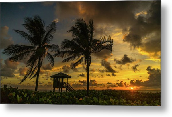 Two Palm Sunrise Delray Beach Florida Metal Print