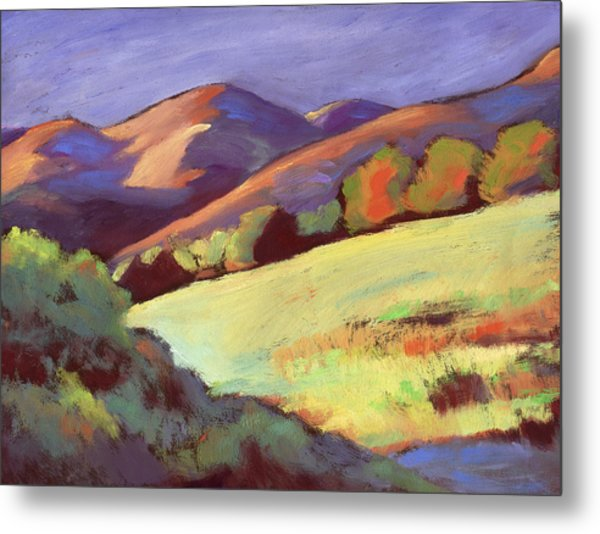 Wildcat Canyon Hillside Metal Print