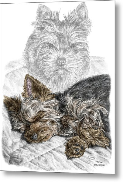 Yorkie - Yorkshire Terrier Dog Print Metal Print
