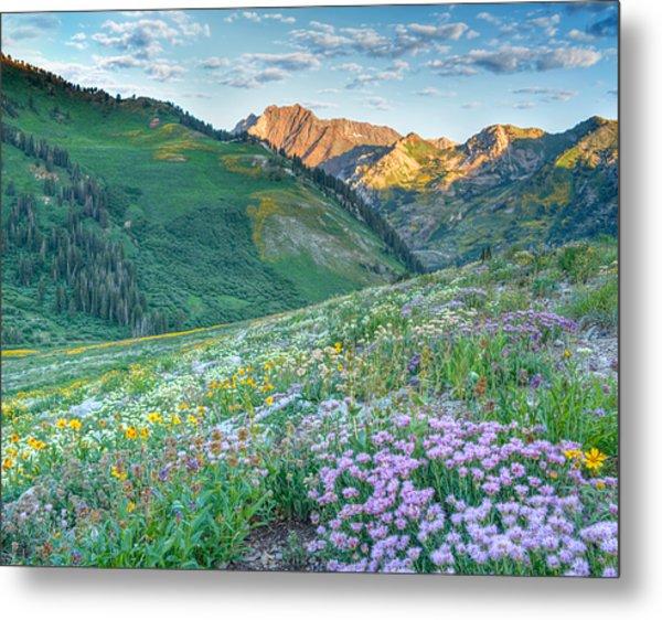 Wasatch Mountains Utah Metal Print