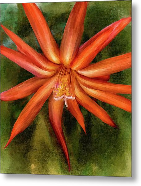 Nora Cactus Blossom Metal Print