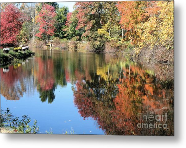 Autumn In New England Metal Print by Amy Holmes