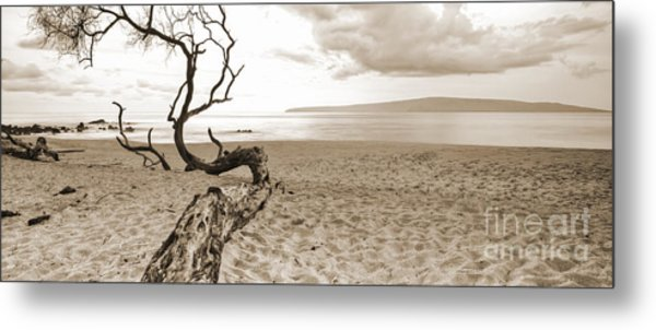 Big Beach Maui Hawaii Metal Print