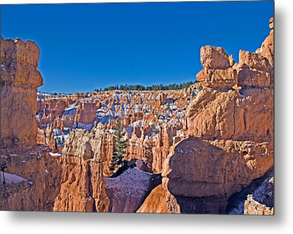 Bryce Canyon N.p. Metal Print by Larry Gohl
