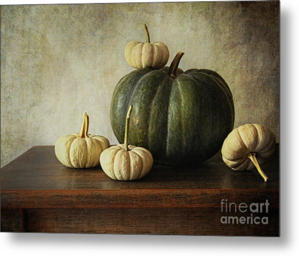 Green Pumpkin And Gourds On Table  Metal Print