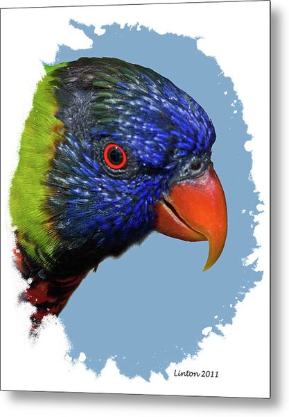 Australian Lorikeet Metal Print by Larry Linton