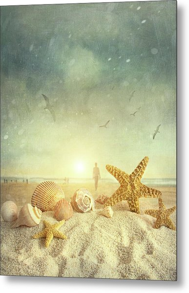 Starfish And Seashells  At The Beach Metal Print