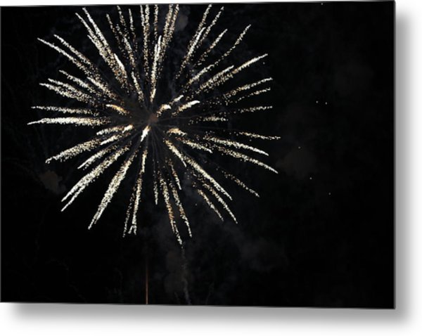 Fireworks Metal Print by Diane Falk