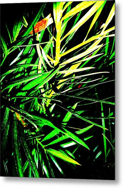 Leaves Metal Print by Jacqueline Doulis