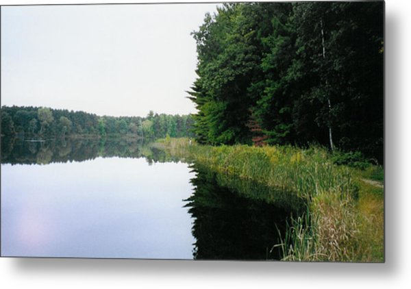 A Clear Day Metal Print by Tom Hefko