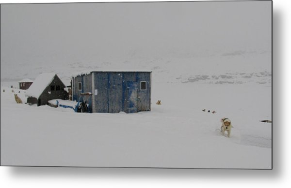 A Sledge Dog House Two Metal Print by Sidsel Genee