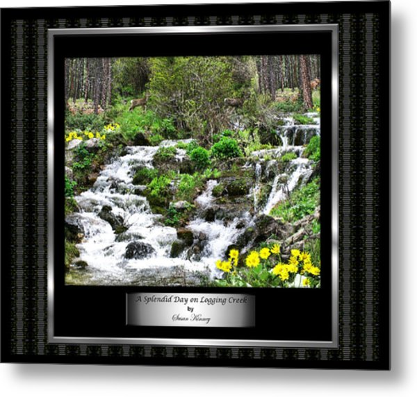 A Splendid Day On Logging Creek Metal Print