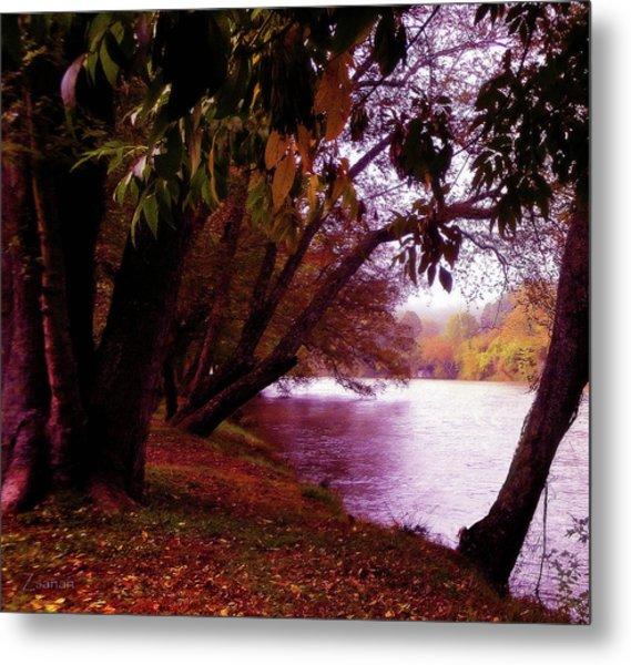 A Walk By The River Metal Print
