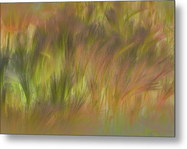 Abstract Grasses Metal Print by Ronald Hoggard