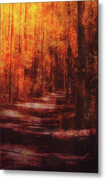 Abstract Path Metal Print