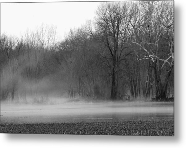 Afternoon Fog Rising Metal Print by Michelle Hastings