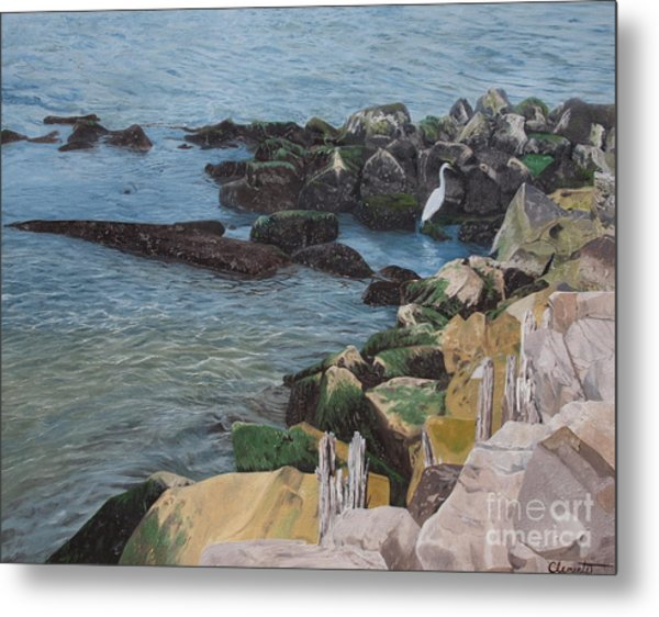 Afternoon On Barnegat Bay  Metal Print