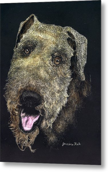 Airedale Terrier Portrait Metal Print by Jessica Kale