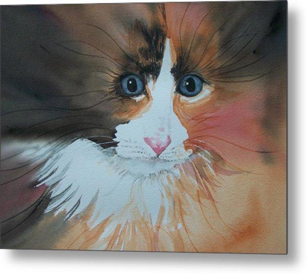 Ali Cat Abstract Metal Print