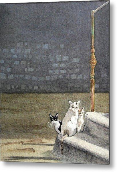 Alley Cats - Gatti Randaggi Metal Print