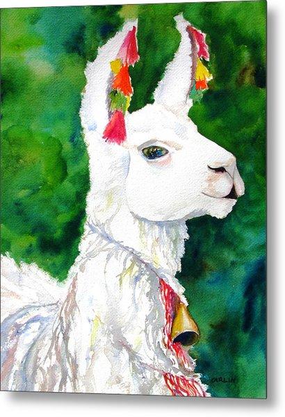 Alpaca With Attitude Metal Print