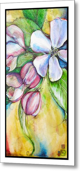 Apple Blossom Metal Print by Clare Catling