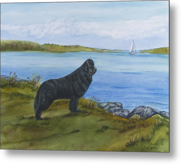 At Seneca Lake Metal Print
