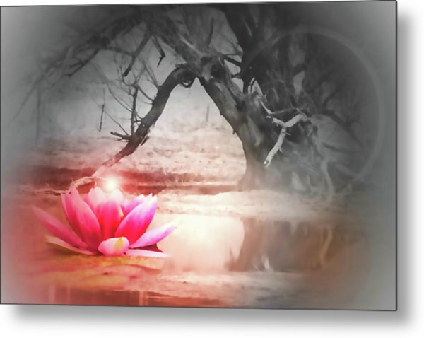 Aura Of Life  Metal Print