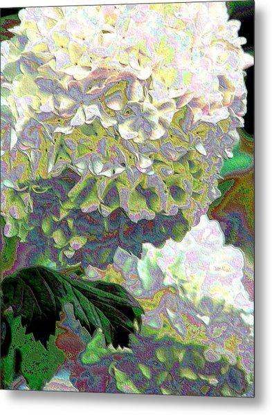 Aurora Two Metal Print