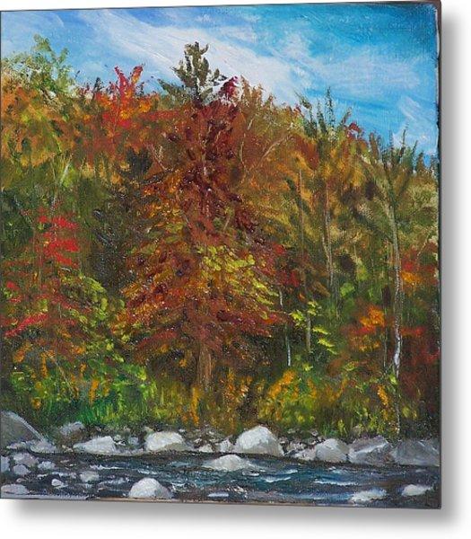 Autumn Colors Metal Print by Pamela Wilson