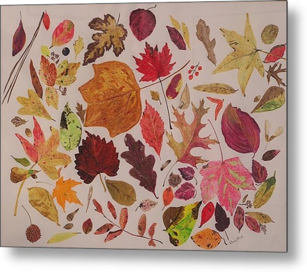 Autumn Leaves Metal Print by Diane Frick