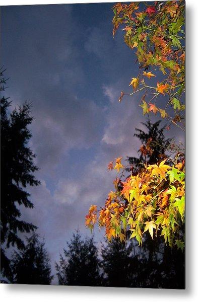 Autumn Sky Metal Print by Ken Day