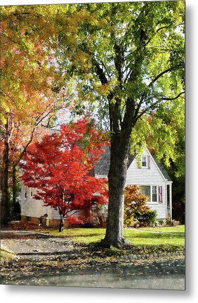 Autumn Street With Red Tree Metal Print by Susan Savad