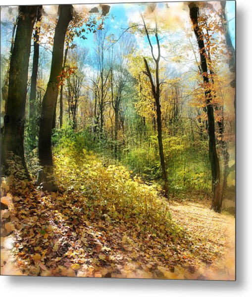Autumn Trail Metal Print by Gina Signore