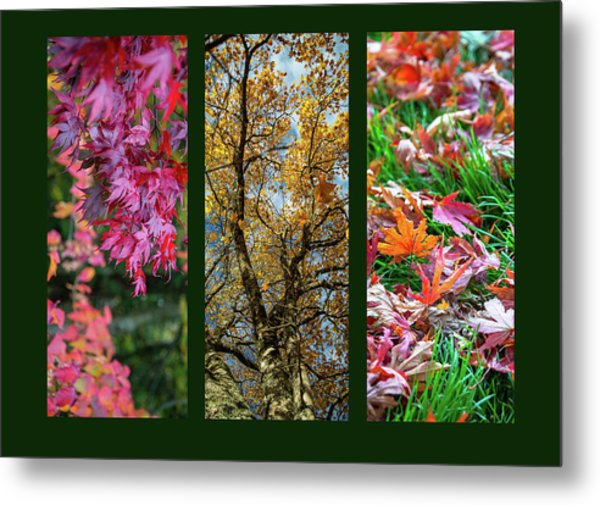 Autumn Triptych Metal Print