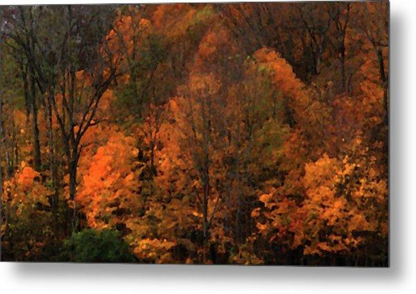 Autumn Woods Metal Print
