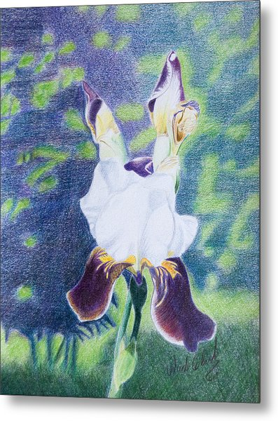 Metal Print featuring the painting Back Yard Iris by Wade Clark