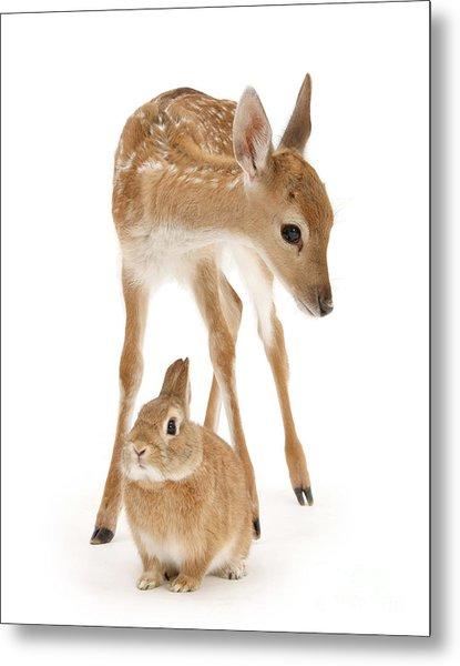 Bambi And Thumper Metal Print