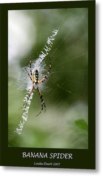 Banana Spider Metal Print by Linda Ebarb