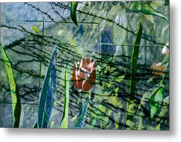 Barbed Vine Metal Print by Nancy  Ethiel