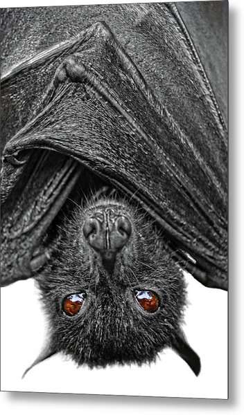 Be Afraid  Metal Print