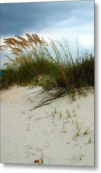 Beach   Grass   And  Sky Metal Print
