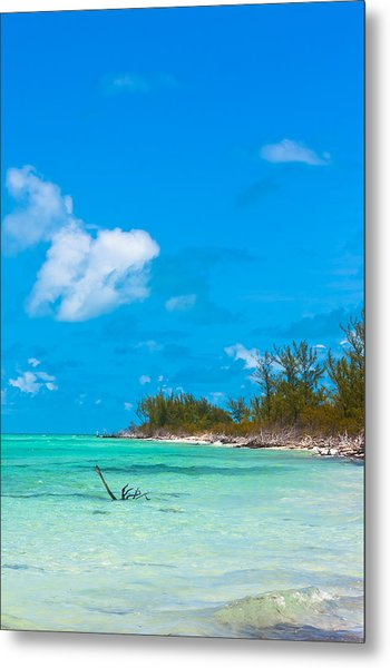 Beach At North Bimini Metal Print