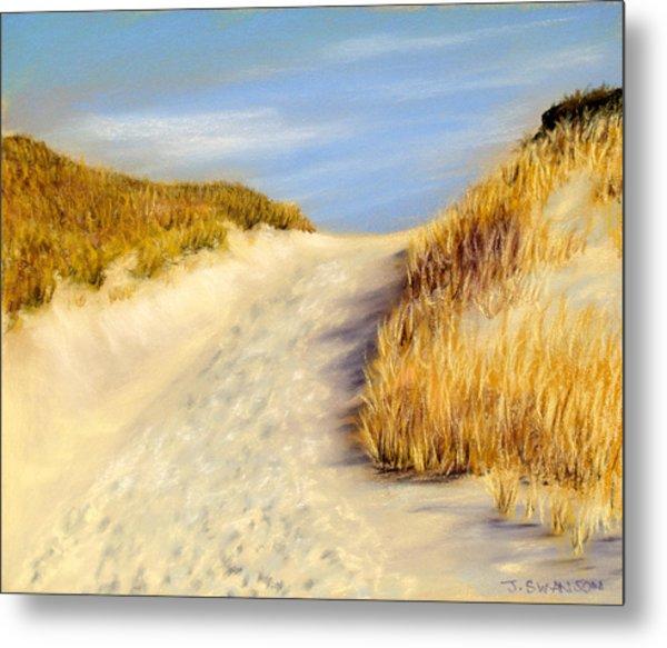 Beach Path Metal Print by Joan Swanson