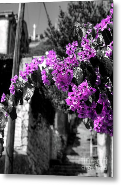 Beauty On The Up Metal Print